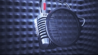 Озвучить радиоролик